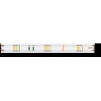 Лента светодиодная стандарт 5050, 30 LED/м, 7,2 Вт/м, 12В , IP65, Цвет: Теплый белый